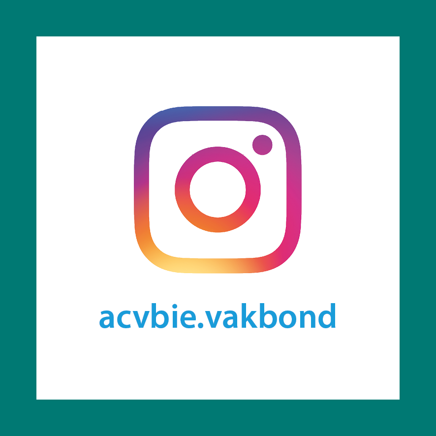 Sociale media website NL - Instagram